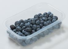 Упаковка ягод черники в лоток